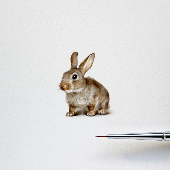 rabbit-5970c797730d4__700