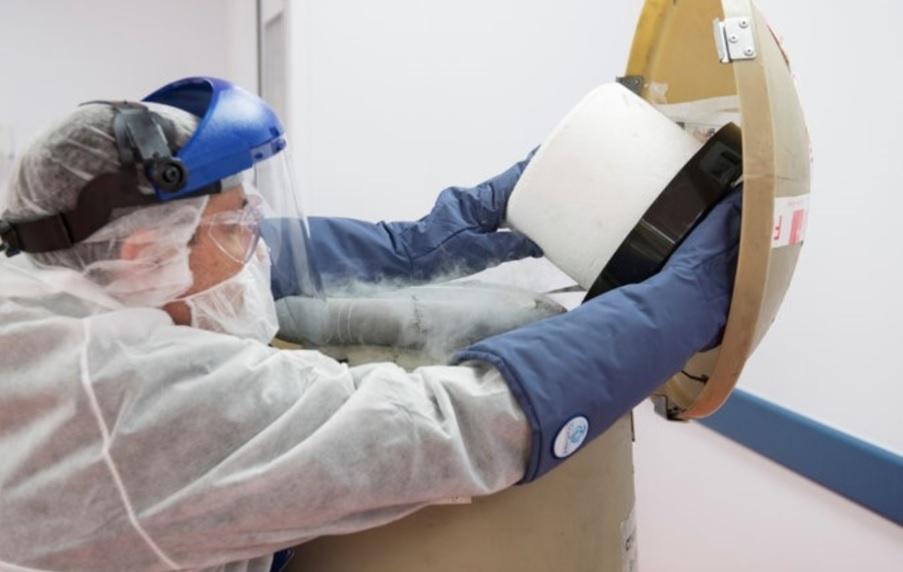 Nueva técnica. Los glóbulos blancos del paciente son congelados y reutilizados para eliminar el cáncer.