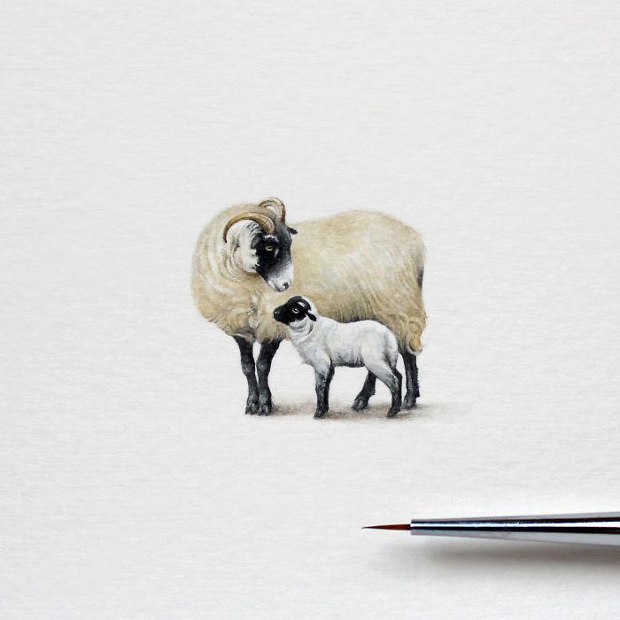 Watercolor-miniatures-5970d5581f499__700