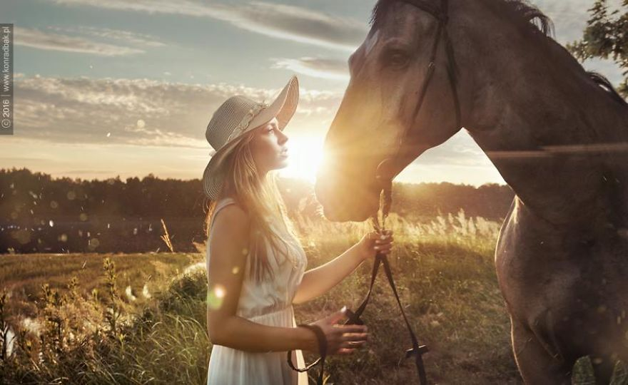 Where-the-Wild-Horses-Run-595611c9f28ca__880