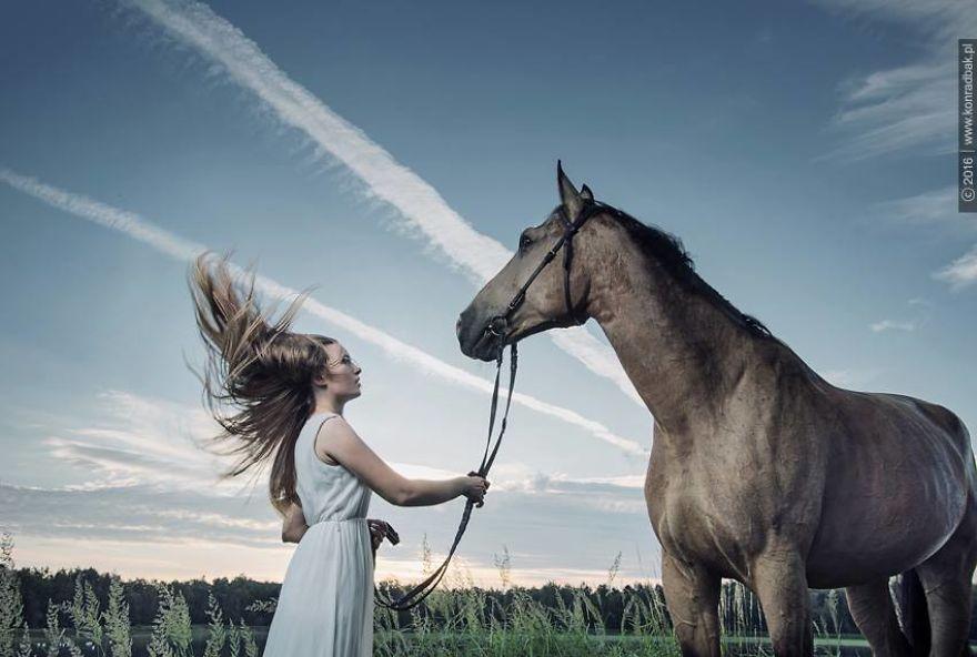 Where-the-Wild-Horses-Run-595611cb7585a__880