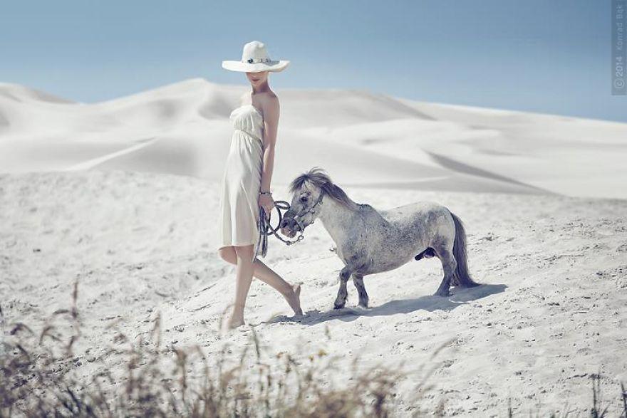 Where-the-Wild-Horses-Run-595611ccc7bad__880