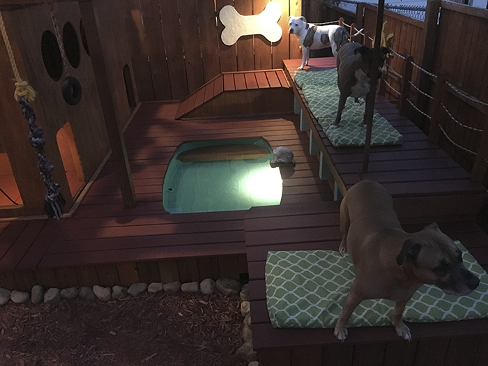dog-playground-backyard-aaron-franks-2-59a3d65465c5d__700