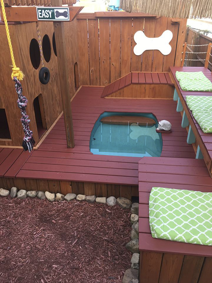 dog-playground-backyard-aaron-franks-6-59a3d61d8fe65__700