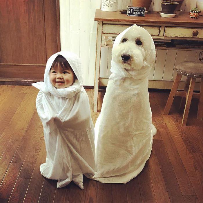girl-poodle-dog-friendship-mame-riku-japan-8-59819d3d714cc__700
