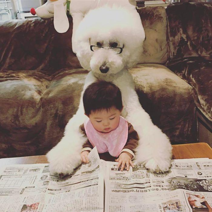 girl-poodle-dog-friendship-mame-riku-japan-9-59819d3f5d23a__700