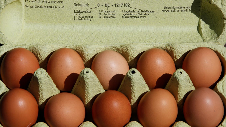 Los huevos tendrían fipronil, una molécula prohibida en el tratamiento de animales destinados a la cadena alimentaria.