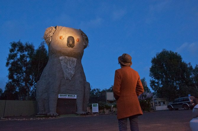 koalas16_670x446
