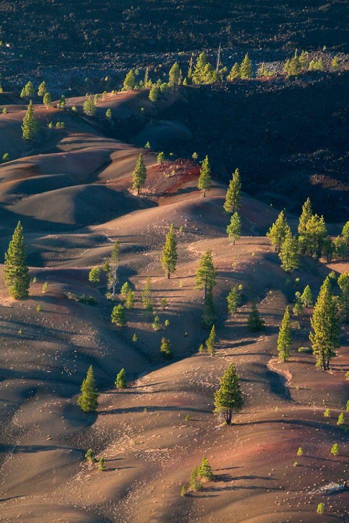 Lassen-Volcanic-National-Park-586bc0c3b4b41__700