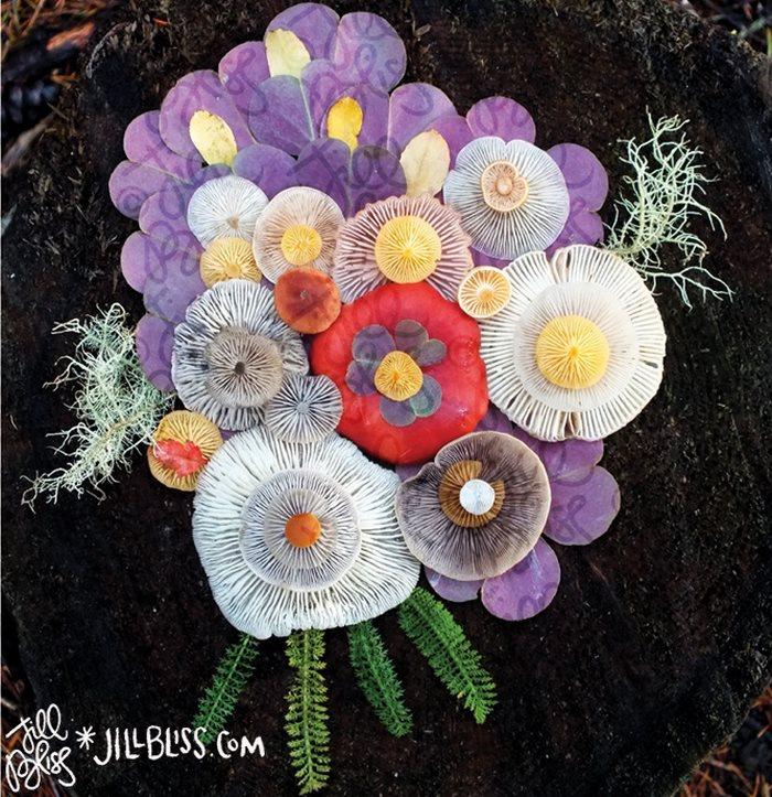 mushrooms-nature-medley-photos-jill-bliss-15-59895e3aa7338__700