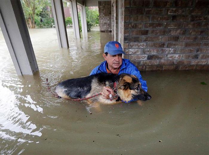 powerful-photos-hurricane-harvey-texas-4-59a512a66064c__700