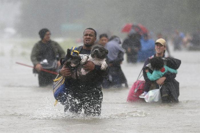 powerful-photos-hurricane-harvey-texas-72-59a52148a00d8__700