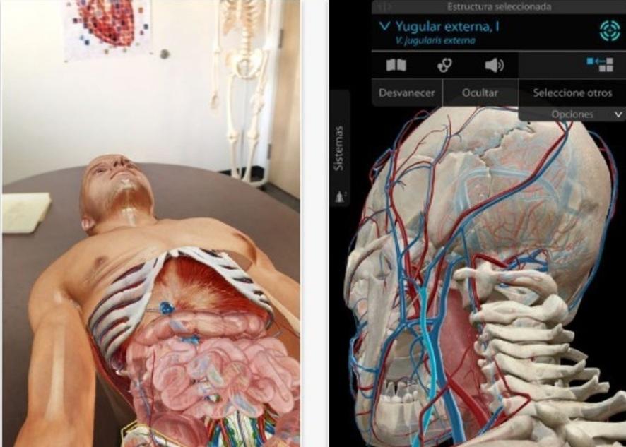 Atlas de anatomía humana 2018