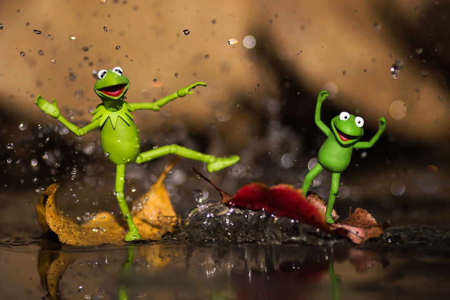 Kermit-and-Robin-Leaf-Rapids-59c41beebc248__880