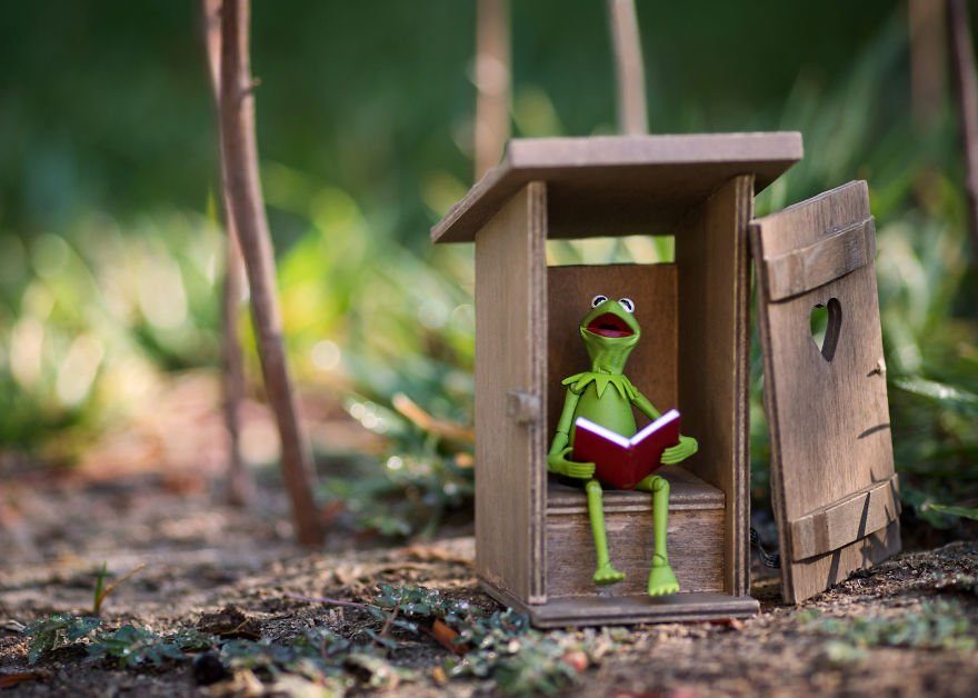 Kermit-Outhouse-59c41ca238777__880