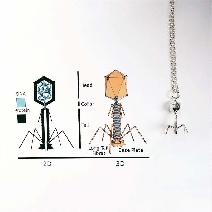 science-inspired-jewelry-somersault1824-24-59c3680b5d0b9__700