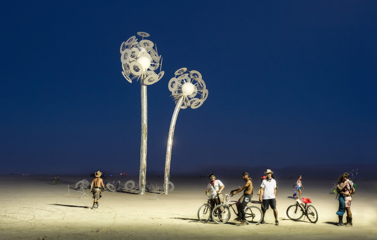 The Lily White Flowers of Burning Man-X2