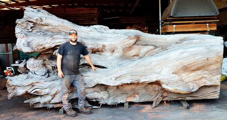wood-chainsaw-giant-octopus-jeffrey-michael-samudosky-1-59c8e47fc98bf__880