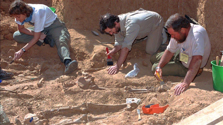 El trabajo de los forenses para recuperar los restos de los guerrilleros.