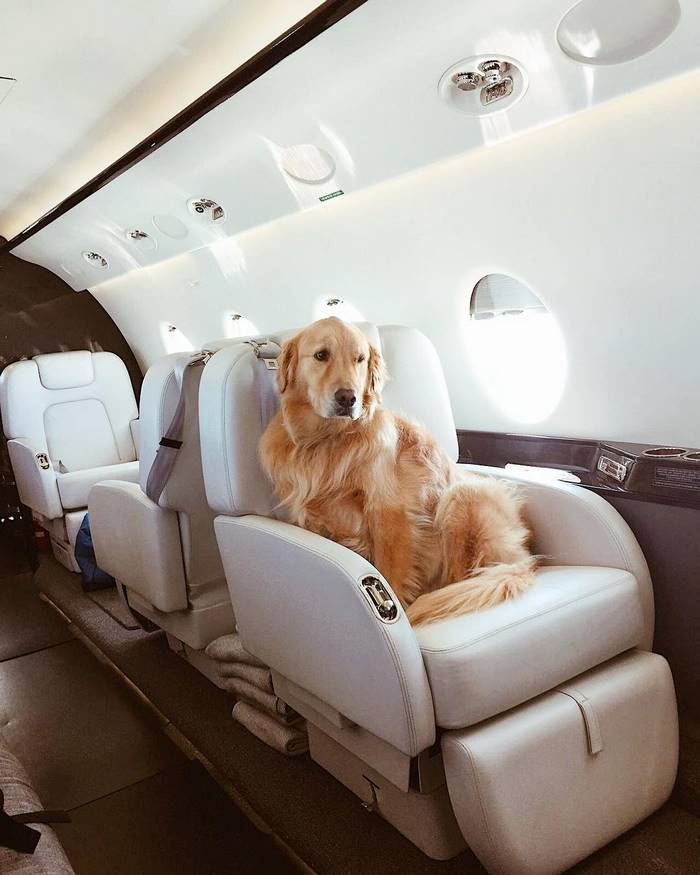 instagram-photoshoot-grounded-private-jet-studio-moscow-36