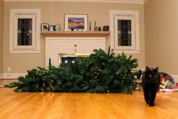 animals-destroying-christmas-1-5a38d652d0bd9__700