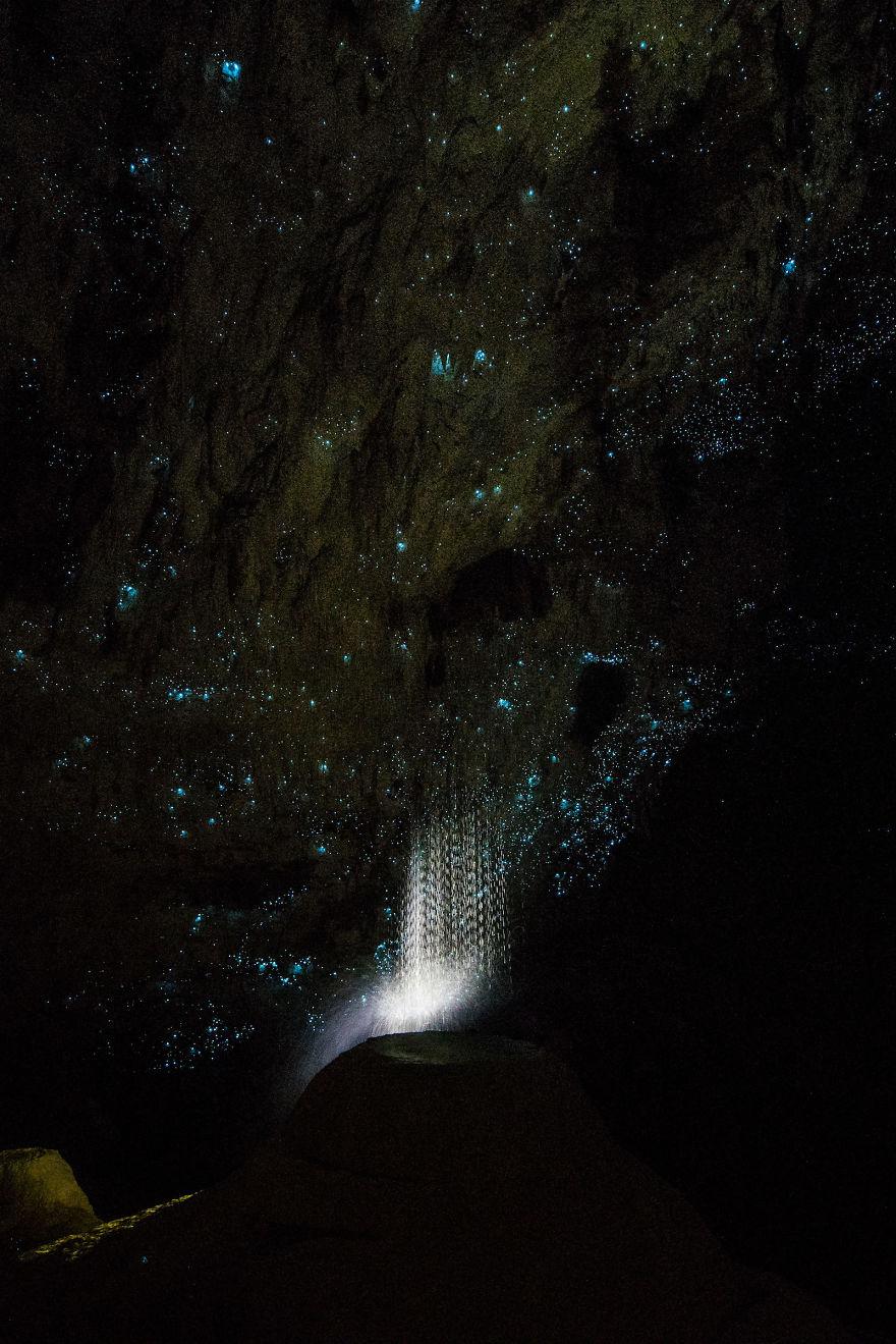 Hollow-Hill-Cave-Glowworms-SJP-16-5a332a9501340__880
