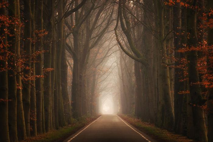 lane2-5a24438ef0bcf__700