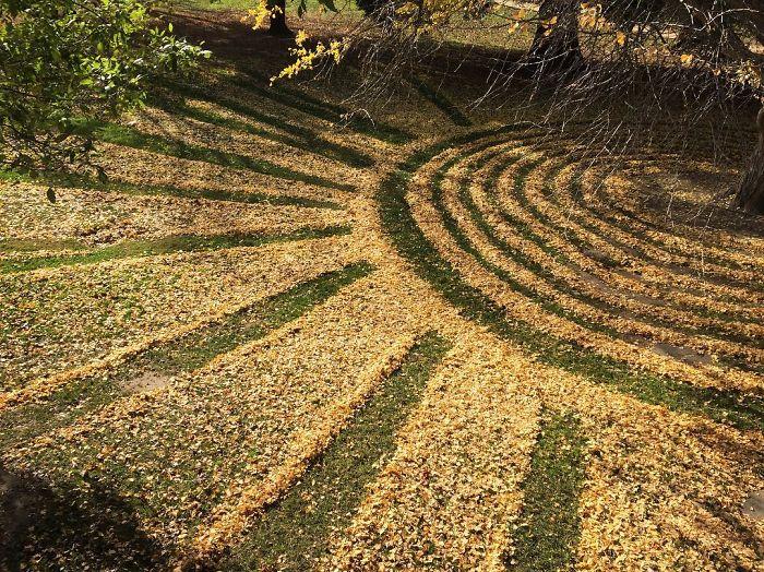 leaf-art-labyrinth-joanna-hedrick-1-5a2f8613de416__700