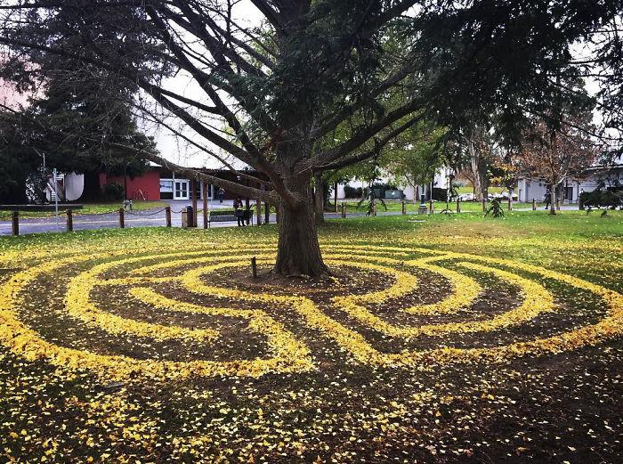 leaf-art-labyrinth-joanna-hedrick-16-5a2f8dab154fd__700