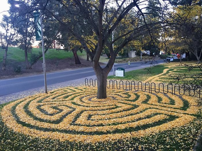 leaf-art-labyrinth-joanna-hedrick-2-5a2f861628987__700