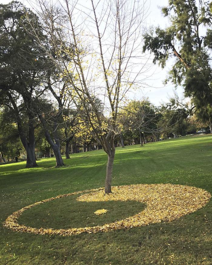 leaf-art-labyrinth-joanna-hedrick-20-5a2f90a00d6de__700
