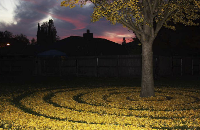 leaf-art-labyrinth-joanna-hedrick-22-5a2f901fe0b35__700