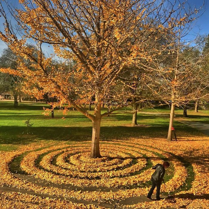 leaf-art-labyrinth-joanna-hedrick-3-5a2f861911ee9__700