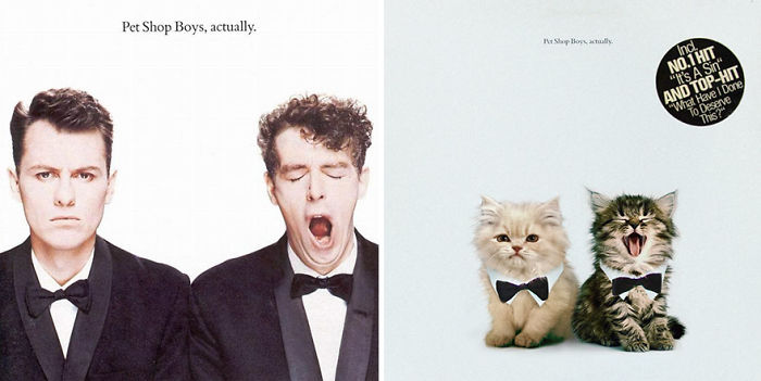 This-guy-created-very-cute-covers-of-the-music-world-replacing-singers-with-cats-5a2e625b29453__700
