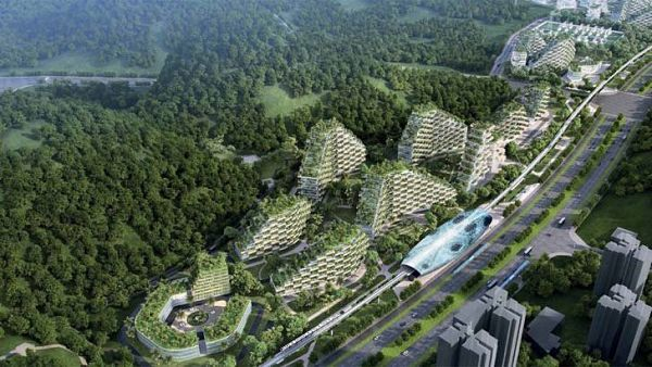 Ciudad-china-arboles-3_opt