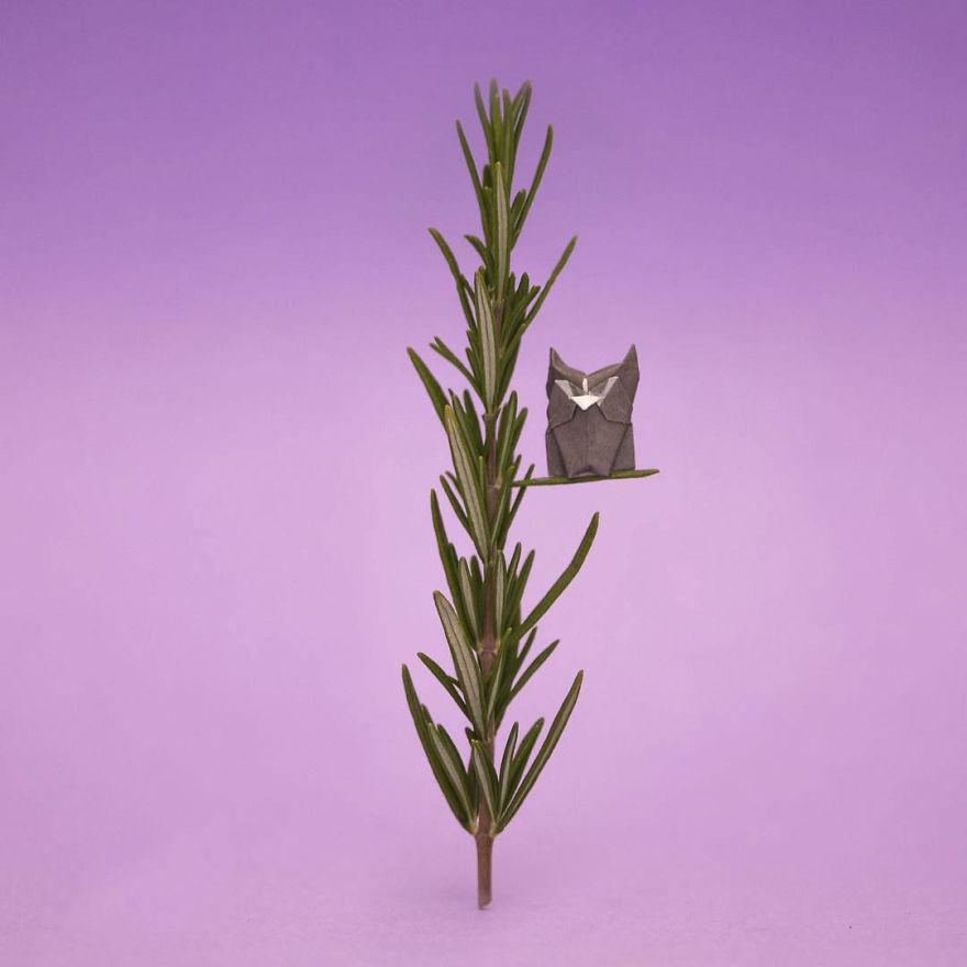 I-am-folding-mini-origami-figures-for-a-whole-year-5a7ab7c778012__880