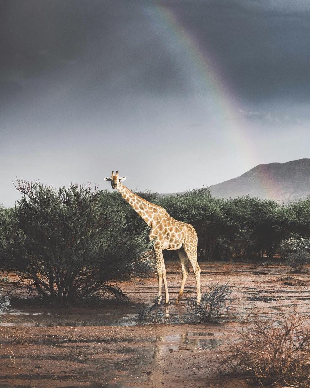 fotograf-Donal-Boyd_29