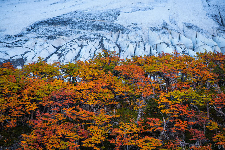 The-End-of-the-Earth-is-full-of-colors-5aa8eaccde6b3__880