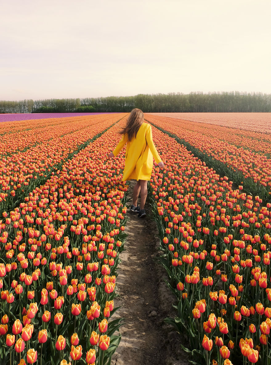 We-Photographed-The-Netherlands-Exploding-In-Colorful-Tulip-Fields-5ae5937c27484__880