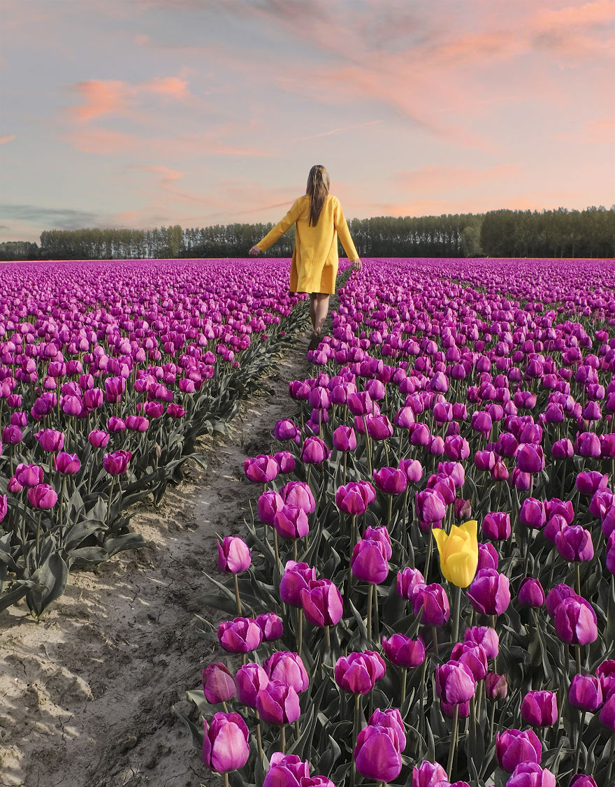We-Photographed-The-Netherlands-Exploding-In-Colorful-Tulip-Fields-5ae5941cd7df0__880