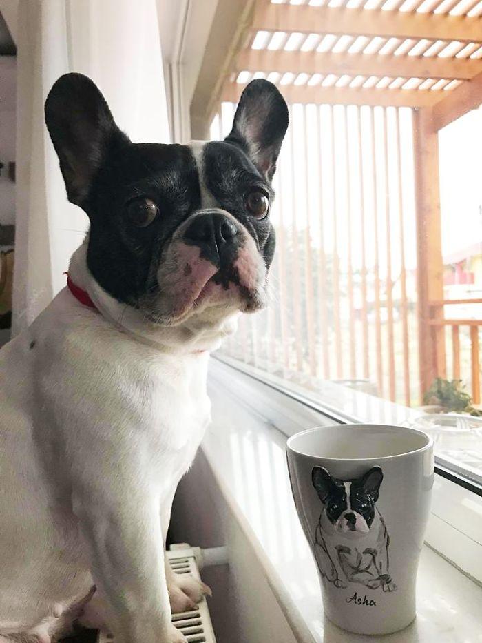 I-create-Custom-3D-Pets-on-Mugs-Handmade-5af0095f4164c__700
