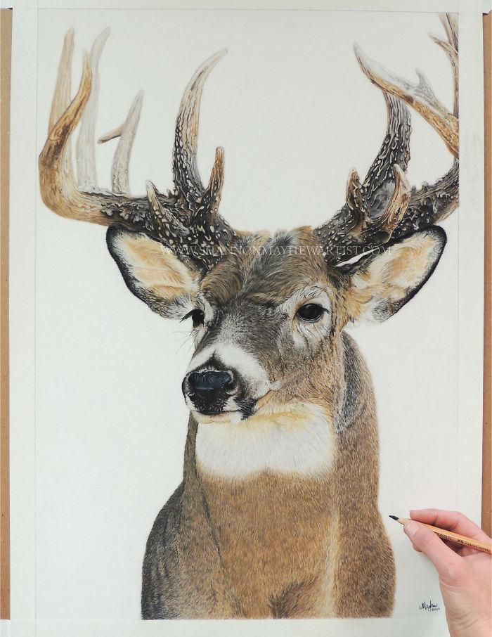 Hyperrealistic-artwork-5b2e893ae21f2__700