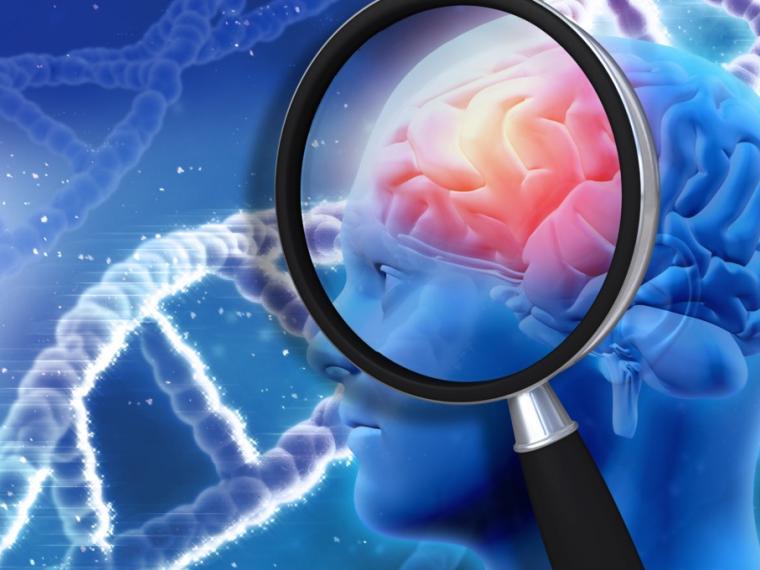 mitos-cerebro6