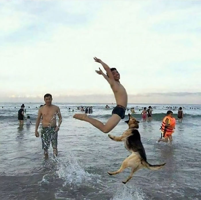 perfectly-timed-photos-right-moment-314-5b0fa2782ca1c__700