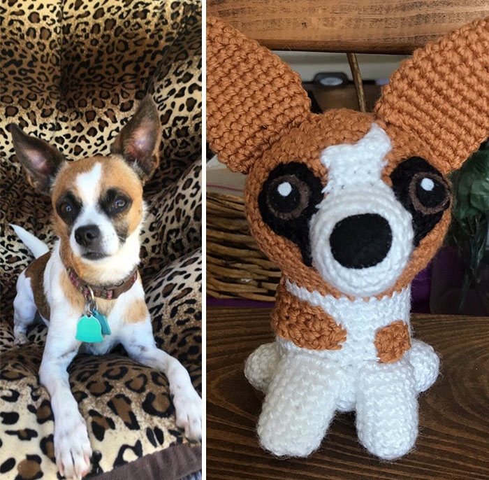 You-can-get-a-hand-crocheted-version-of-YOUR-dog-5b20c8033a05b__700
