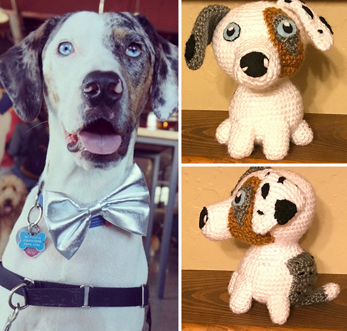 You-can-get-a-hand-crocheted-version-of-YOUR-dog-5b20c80d40ae6__700