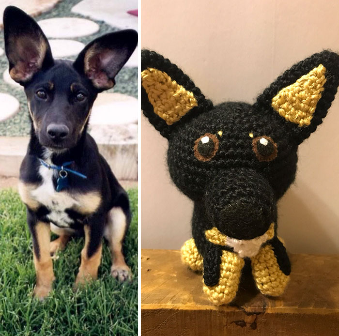 You-can-get-a-hand-crocheted-version-of-YOUR-dog-5b20c80f2095a__700