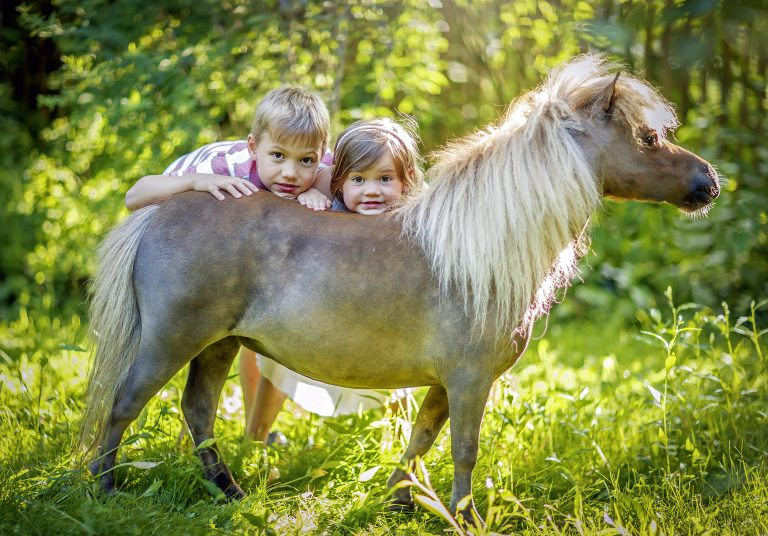7_CATERS_MINI_HORSES_AND_KIDS_08-768x536