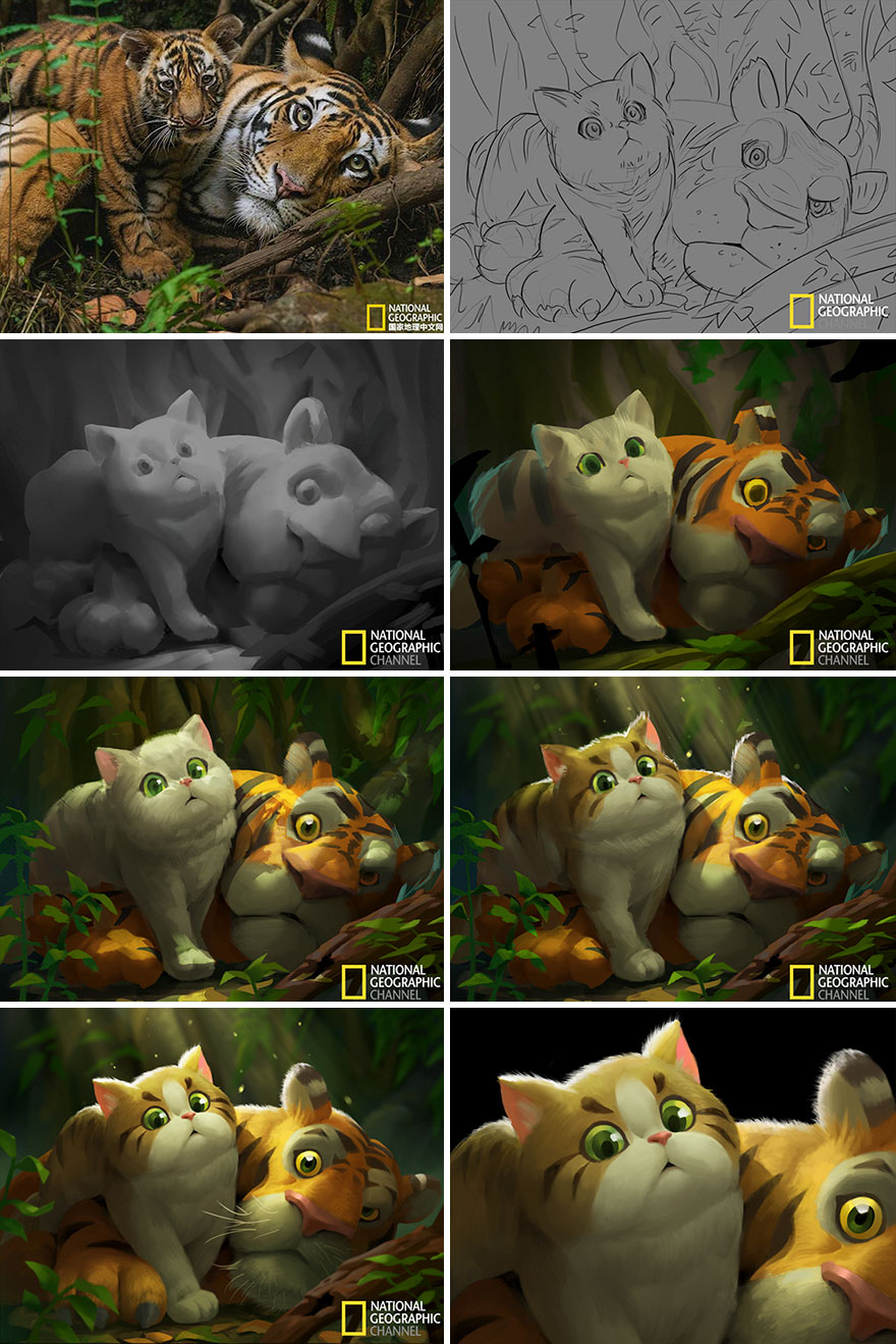 Artist-transforms-National-Geographic-photographs-into-adorable-illustrations-5b3de2ce30147__880