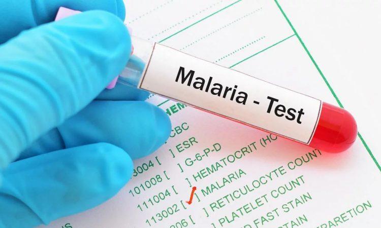 OMS declara a Argentina libre de malaria